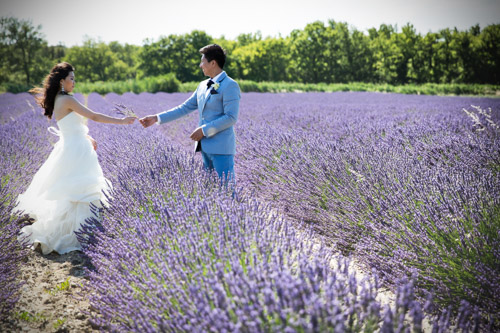 Destination Wedding in Provence, France